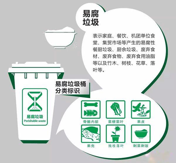 易腐垃圾桶分类识别